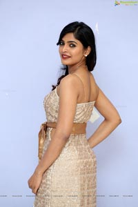 Sanchita Shetty at Party Audio Launch