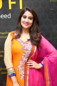 Manjusha at Devadas 50 Crores Sucessmeet
