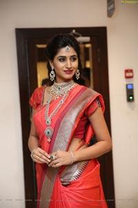 Shamili Manepally Jewellers Utsavi Collection Launch